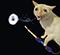 SmokeDex Profilbild von Rainz